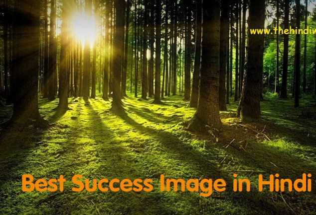 Best Success Image in Hindi